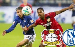 Ponturi fotbal Leverkusen - Schalke Bundeliga
