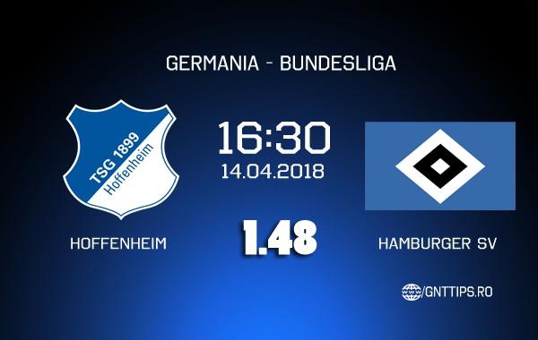 Ponturi fotbal – Hoffenheim – Hamburger SV – Bundesliga – 14.04.2018
